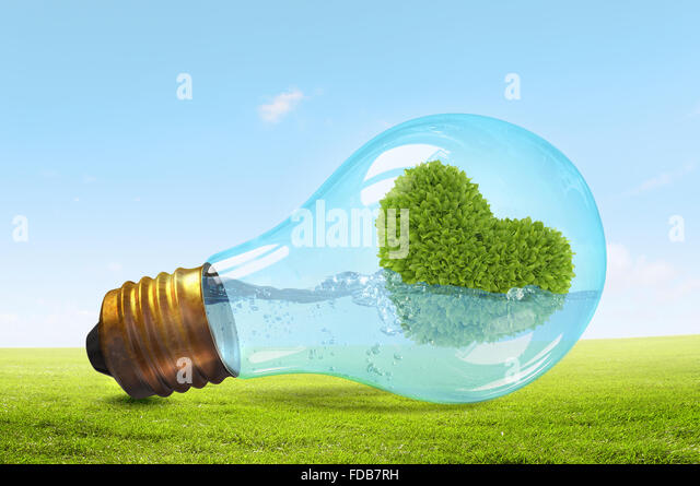 Glass lightbulb with water and love shaped green tree inside - Stock Image