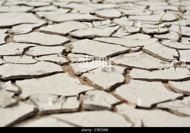 Dry, cracked mud, symbolic image for climate change - Stock Image