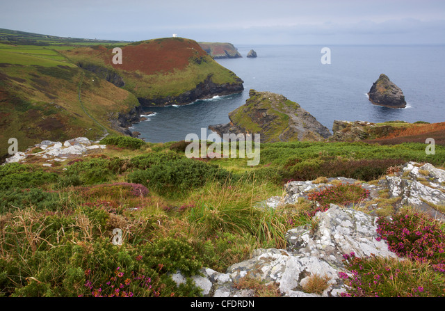 A view of the Cornish coastline at Boscastle showing the entrance to Boscastle Harbour, Cornwall, England, United - Stock Image