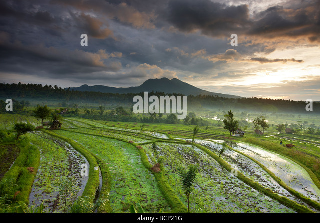 terraced rice fields near Tirtagangga at dawn with the sun rising over the volcanic peak of Gunung Lempuyang, Bali, - Stock-Bilder