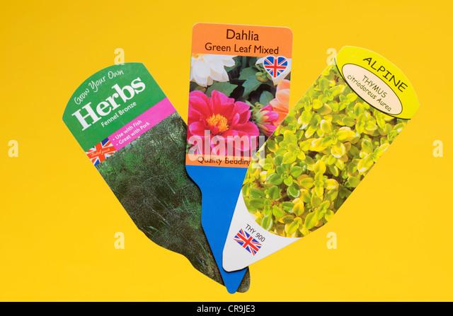 Three plant labels - Stock Image