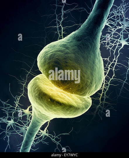 3d illustration of a dendrite - Stock Image