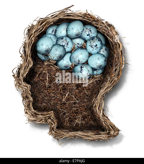 Protecting the brain mental health concept as a bird nest shaped as a human head and face with a group of eggs in - Stock-Bilder