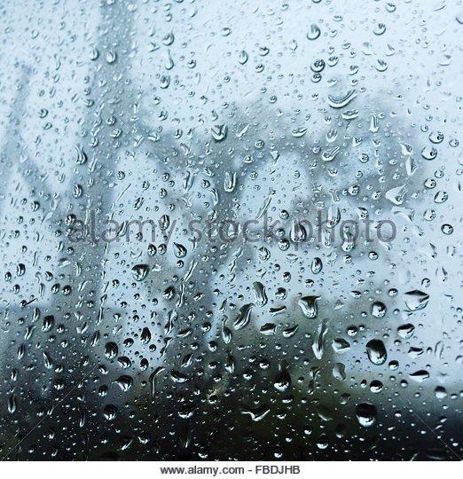 Trees Seen Through Wet Window During Monsoon - Stock-Bilder