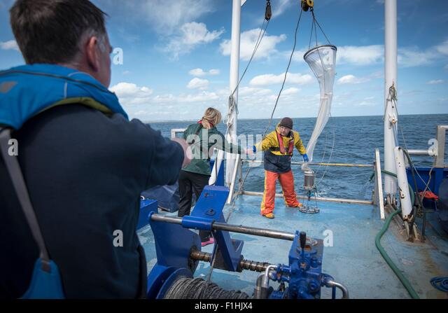 Marine biologists taking samples from plankton net on research ship - Stock Image