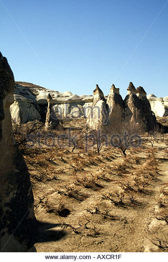 GOREME CAPPADOCIA TURKEY  Vineyards between the so called fairy chimneys. - Stock Image