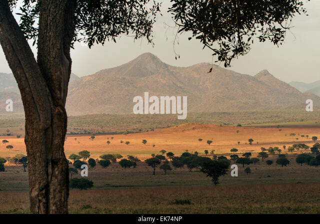 Kidepo Valley National Park in Northern Uganda, East Africa - Stock Image
