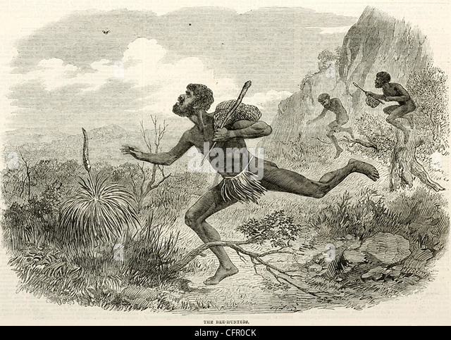 THE BEE HUNTERS engraving from Illustrated London News 1863 - Stock Image