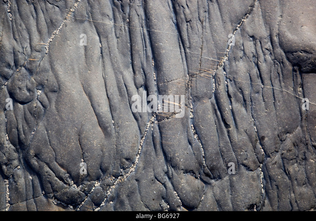 Veins and ripples in slate and shale rocks; beach; Strangles; near Crackington Haven; Cornwall - Stock Image