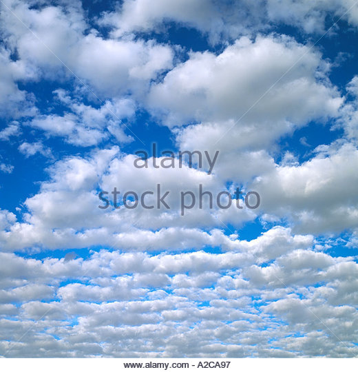 White puffy Cumulus Clouds on Blue Sky Simpson Clouds - Stock Image