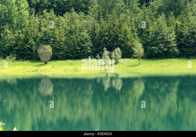 Tree reflections on a lake in the Sibillini National Park,Le Marche Italy - Stock Image