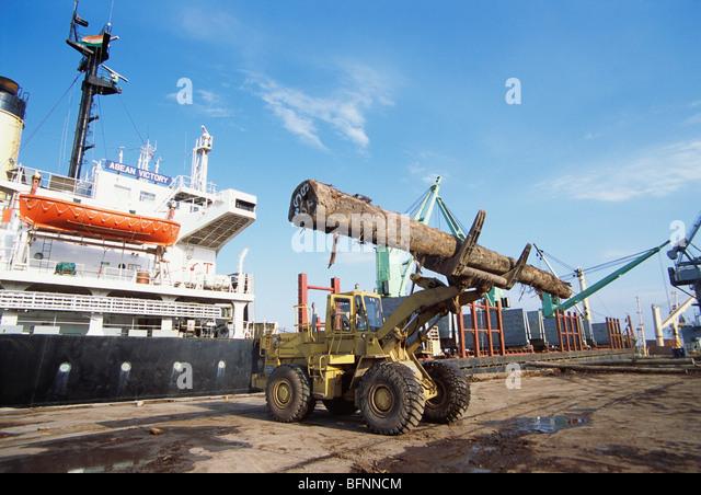 HMA 62589 : Import of timber wood ; kandla port ; Kutch ; Gujarat ; India - Stock-Bilder