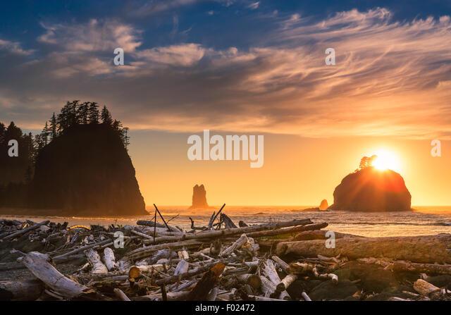 Sunset La Push Beach in Olympic National Park, Washington State, USA - Stock-Bilder
