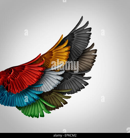 Alliance concept and working together business idea as a diverse group of bird wings coming as one to form a giant - Stock-Bilder