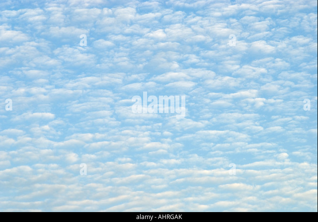 Sky Filled with Cirrocumulus Clouds aka Mackeral Sky - Stock Image