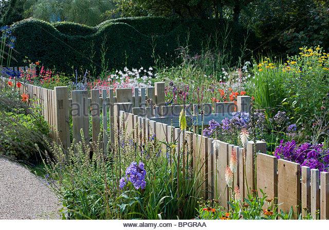 small garden wooden fence fencing unusual varied widths flowling hedge summer flower perennials Gaura linheimeri - Stock Image