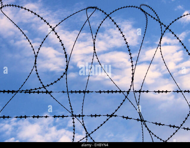 Barbwire - Stock Image