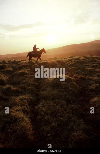 a-paniolo-or-hawaiian-cowboy-rides-on-th