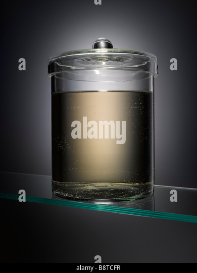 An empty specimen jar - Stock Image