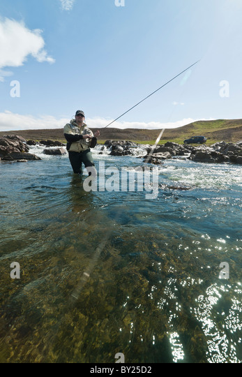 Fly fisherman reeling in a salmon in beautiful surroundings in Iceland - Stock Image