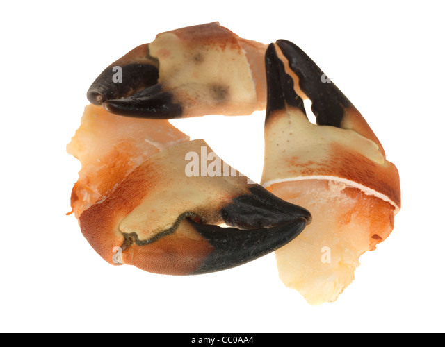 crab claws how to eat