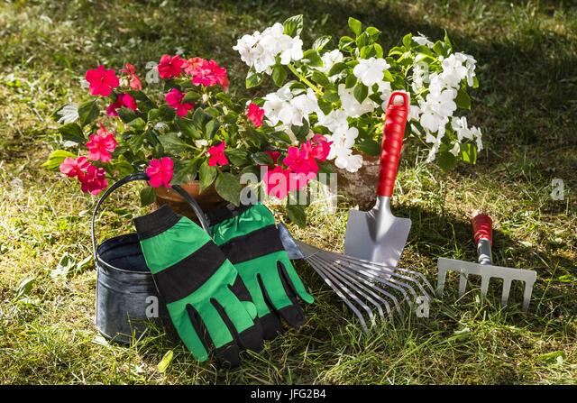 gardening - Stock Image