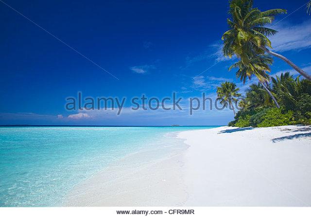 Tropical beach and lagoon, Maldives, Indian Ocean, Asia - Stock Image