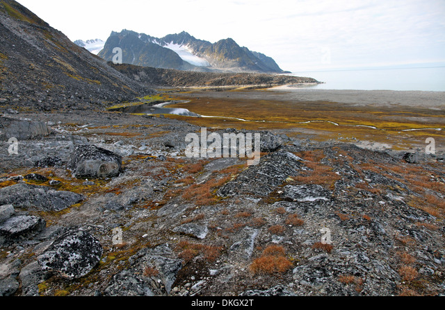 Glacial foreshore, Magdalenefjord, Svalbard Looking west - Stock Image