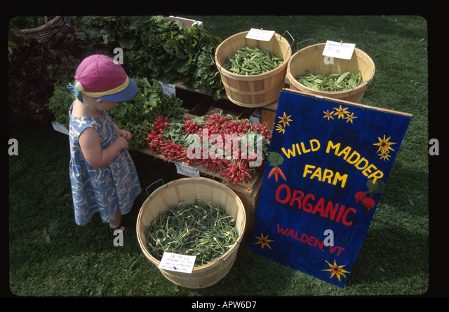 Vermont Montpelier Farmers Market garlic tops radishes peas locally grown organic produce from Wild Madder Farm - Stock Image