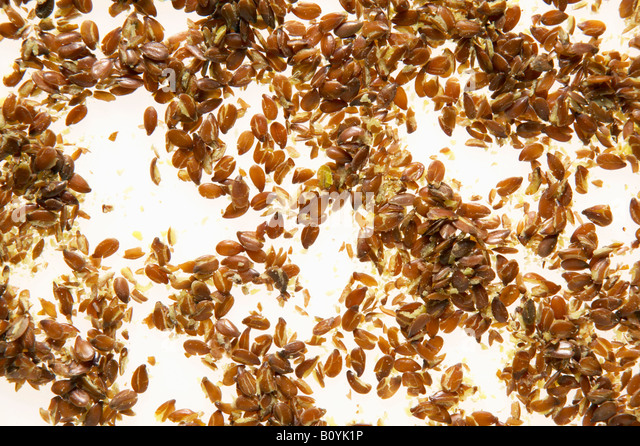 Linseed, elevated view - Stock Image