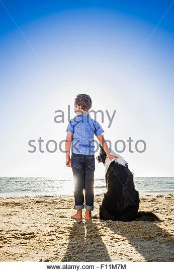 Caucasian boy petting dog on beach - Stock Image
