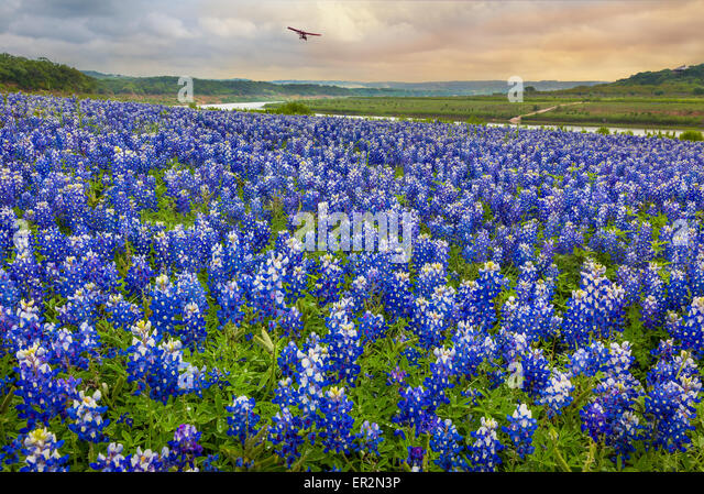 Turkey Bend Recreation Area, Texas. Turkey Bend is on the Colorado River in southeastern Burnet County. - Stock Image