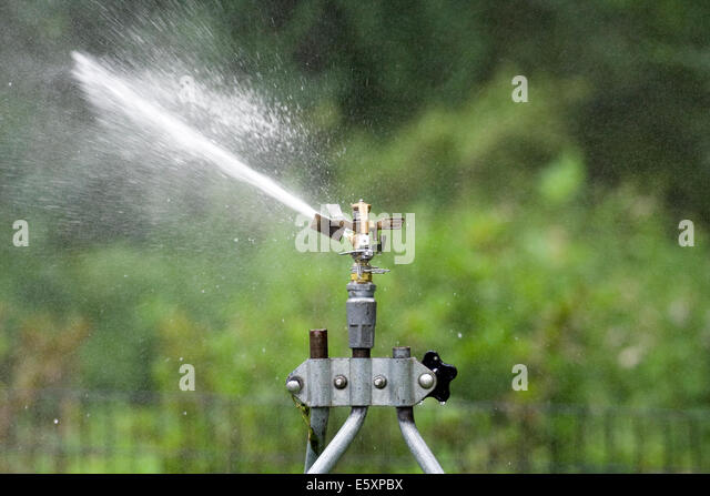 Rain Bird Adjustable Brass Impact Rotor Sprinklerhead sending a stream of water forward and to the left - Stock Image