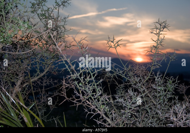 Sunset in hills above Fuengirola, Spain, nightfall, - Stock Image