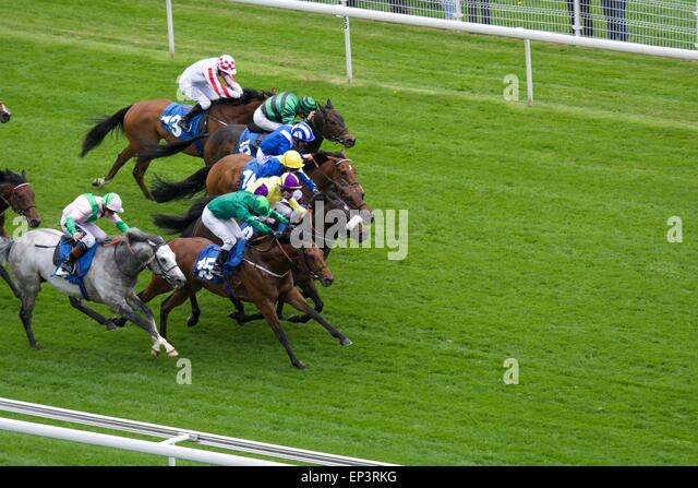 York, UK. 13th May, 2015. Glass Office (number 4) , the grey nearest to the fence, ridden by Jim Crowley forces - Stock Image