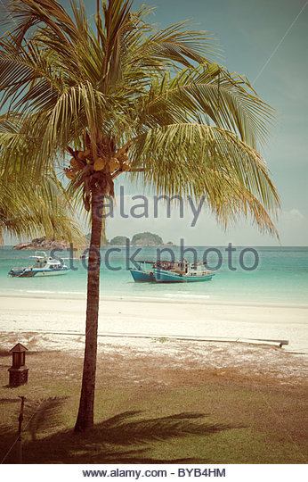 Beach with palm trees, nostalgic look, Pulau Redang Island, Malaysia, Southeast Asia, Asia - Stock-Bilder