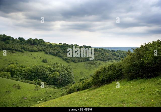 Landscape - Stock Image