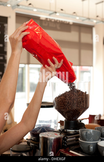 Barista pouring coffee beans into grinder - Stock Image