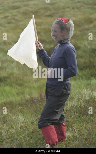 how to avoid midges in scotland