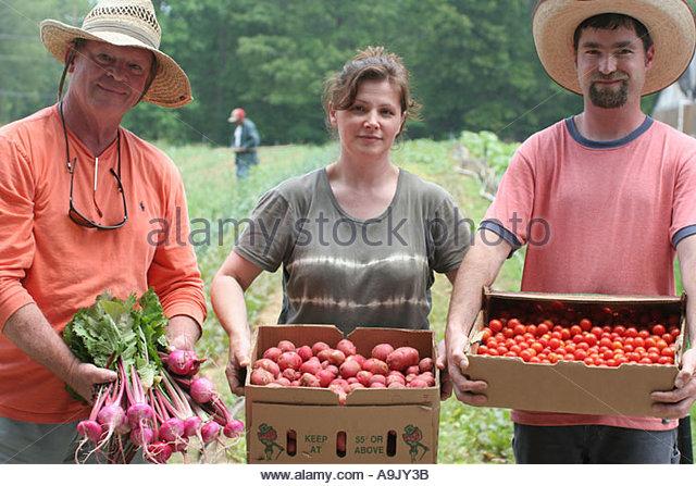 Alabama Mt. Laurel Grow Alabama organic farming turnips new potatoes cherry tomatoes - Stock Image
