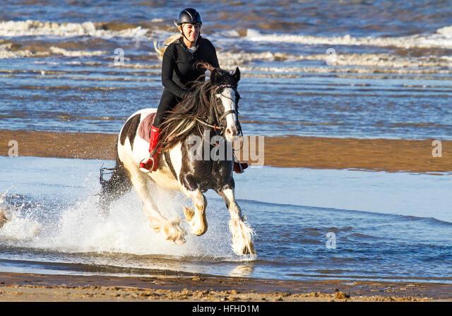 Ainsdale, Merseyside, UK. 2nd Jan, 2017.  UK Weather. Exercising Horses. Charlotte exercising her Gypsy Cob, 4 year - Stock Image