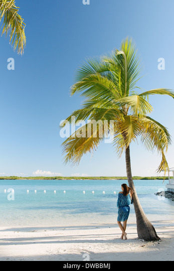 Young woman leaning against palm tree, Providenciales, Turks and Caicos Islands, Caribbean - Stock Image