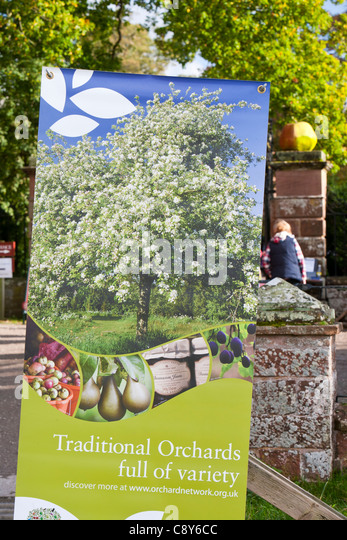 Information about orchards at the Apple Day at Acorn Bank, Penrith, Cumbria, UK. - Stock Image