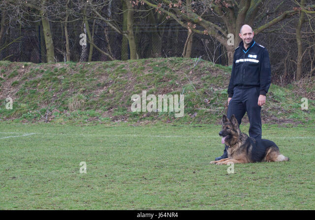 Suffolk Constabulary policeman with his dog - Stock Image