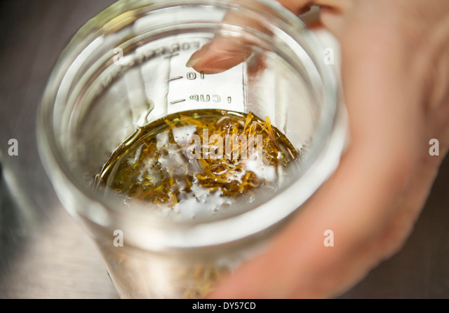 Making a remedy with calendula and olive oil in health foods store - Stock Image