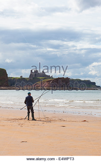 Sea angling from the beach at Seacliff with a view beyond to Tantallon Castle, near North Berwick, East Lothian, - Stock Image