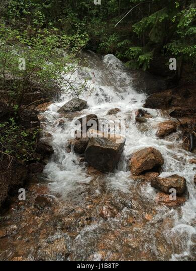 Stream in Colorado Springs. my family and I decided to stop off on this random trail in this mountains. Recent rain - Stock Image