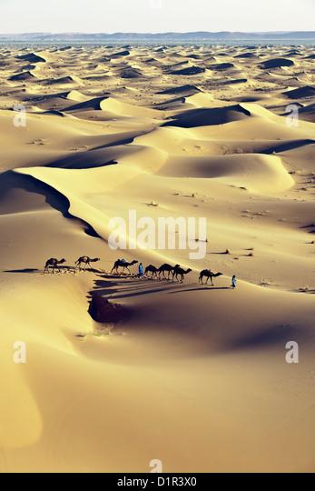 Morocco, M'Hamid, Erg Chigaga sand dunes. Sahara desert. Camel drivers and camel caravan. - Stock Image