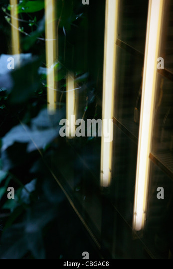 Building exterior reflected in water - Stock Image