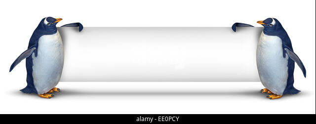 Penguin blank banner holding a horizontal card sign as two cute polar birds with a smiling expression supporting - Stock Image